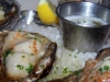 gw-fins-smoked-sizzling-oysters