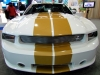 shelby-gts-2