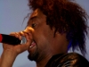 mad-decent-block-party-2013-danny-brown-5