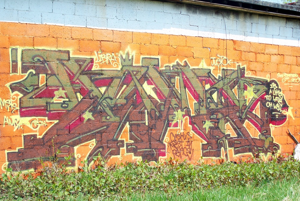 Detroit Graffiti near Oakland and Holbrook 4