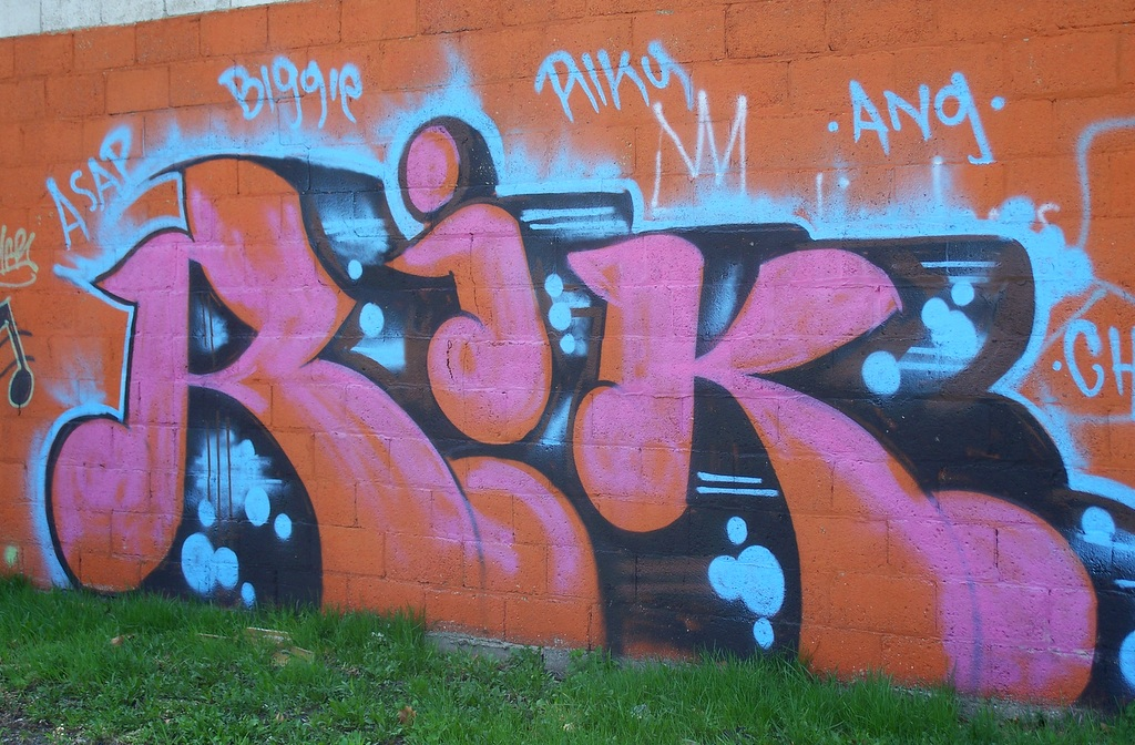 Detroit Graffiti near Oakland and Holbrook 5
