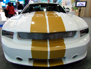 Shelby GTS Ford Mustang #2