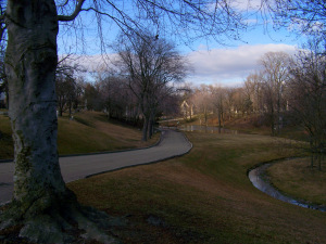 Frederick Law Olmsted - Elmwood Cemetery 2