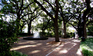 Johnson Square Savannah Georgia